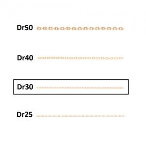 زنجیر در30